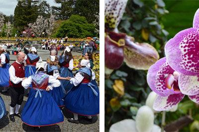 Sonntag, 28. April: Orchideenschau + internationaler Bodensee-Trachtentag