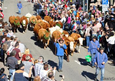 Großer Markttag und Viehabtrieb Oberried 05.10.2019